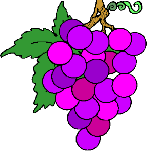 grappe-de-raisin
